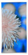Pale Pink Bright Blue Beach Towel