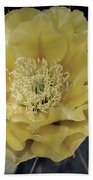 Pale Yellow Prickly Pear Bloom  Beach Towel