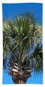 Palm Against Blue Sky Beach Towel