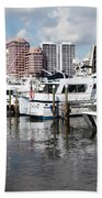 Palm Beach Docks Beach Towel