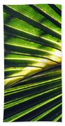 Palm Frond Beach Towel