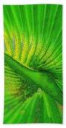 Palm Frond Work A Beach Towel