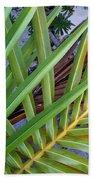 Palm Leaf Abstract Beach Towel