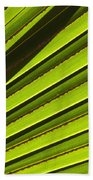 Palm Lines Beach Towel