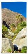 Palm Oasis On Borrego Palm Canyon Trail In Anza-borrego Desert Sp-ca Beach Towel