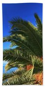 Palm Over The Sea Beach Towel