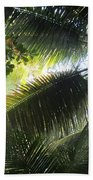 Palm Pattern 1 Beach Towel