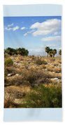 Palm Springs Indian Canyons View  Beach Towel