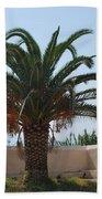 Palm Tree 3 Beach Towel