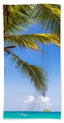 Palm Tree And Caribbean Beach Towel