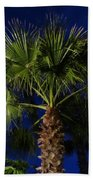 Palm Tree At Night Beach Towel