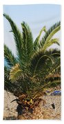 Palm Tree By The Beach Beach Towel