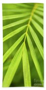 Palm Tree Leaf Beach Towel