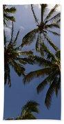 Palm Trees 3 Beach Towel