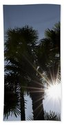 Palm Trees In Backlit Beach Towel