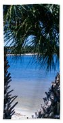 Palm Trees Of Gulf Breeze Beach Towel