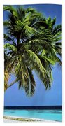 Palm Trees On Little Palm Island Filtered Beach Towel