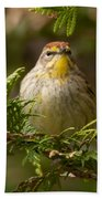 Palm Warbler Beach Towel