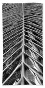 Palms E The Other Way In Black And White Beach Towel