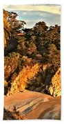 Palms Over Mcway Beach Towel by Adam Jewell