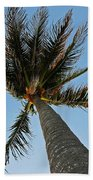 Palms Over My Head Beach Towel
