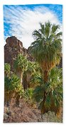 Palms Stand Tall In Andreas Canyon In Indian Canyons-ca Beach Towel