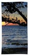 Pamlico Sound Through The Trees Beach Towel