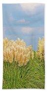 Pampas Grass Beach Towel