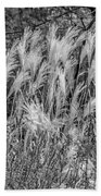 Pampas Grass Monochrome Beach Towel
