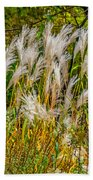Pampas Grass Beach Sheet