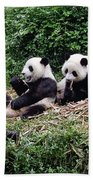 Pandas In China Beach Towel