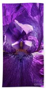 Pandora's Purple Beach Towel