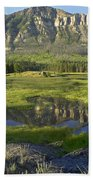Panorama Of Windy Mountain Wyoming Beach Towel