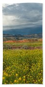 Panorama Striaght Cliffs And Rabbitbrush Escalante Grand Staircase  Beach Towel
