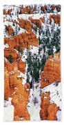 Panorama Winter Storm Blankets Thors Hammer And Bryce Canyon Beach Towel