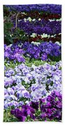 Pansy Field Beach Towel