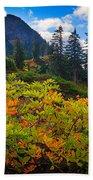 Park Butte Fall Color Beach Sheet