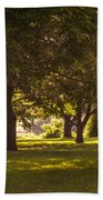 Park By The Rivers Beach Towel