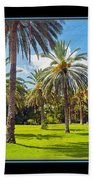 Park Open Area 2 Beach Towel