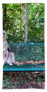 Park Pal Beach Towel