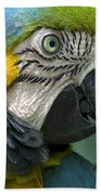 Parrot 9 Beach Towel