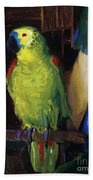 Parrot Beach Towel by George Wesley Bellows