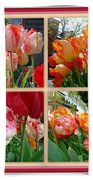 Parrot Tulips In Springtime Philadelphia Beach Towel