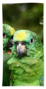 Parrot Whispers Beach Towel