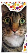 Party Animal- Cat With Confetti Beach Towel