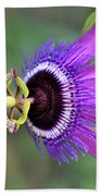 Passiflora Lavender Lady Beach Towel