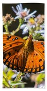 Passion Butterfly Beach Towel