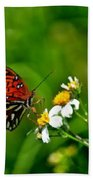 Passion Butterfly Painted Beach Towel