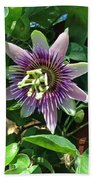 Passion Flower 4 Beach Towel
