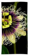 Passion Flower Beach Sheet by James Temple